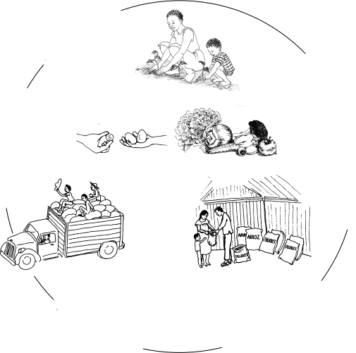 Illustration of the below:In a circle, going clock-wise, a woman and child planting seedlings, next to some vegetables, next to people beside sacks of rice and beans, next to a truck full of produce, next to a hand offering a coin for 2 eggs.