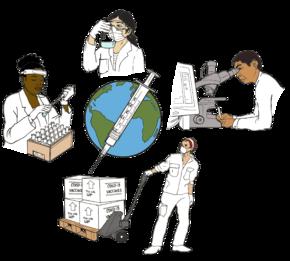la ilustración muestra a personas de diferentes regiones del mundo trabajando juntas en el desarrollo de las vacunas: una persona llena los tubos de ensayo, una persona examina a un vaso de precipitación, una persona utiliza un microscopio y una computadora y una persona envía las vacunas.