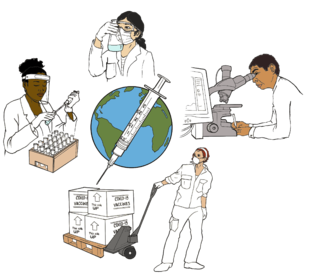 sIllustration shows people around the world working on the new vaccines: a person filling vials, a person examining a beaker, a person using a microscope and computer, a person shipping the vaccines.