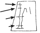 marks made at different heights on the outline.