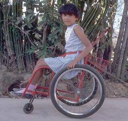 demuestra foto de silla de ruedas sin camilla.