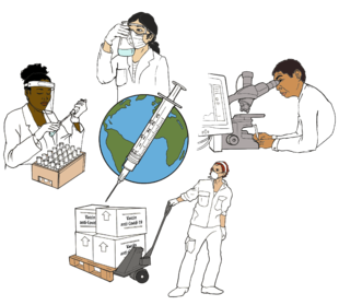 Illustration shows people around the world working on the new vaccines: a person filling vials, a person examining a beaker, a person using a microscope and computer, a person shipping the vaccines.